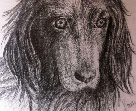 Portrait Fanette 2