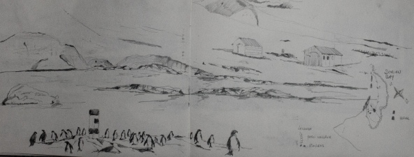 Dessin cahier Didier Antarctique-15
